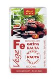 Fe rautapidolaatti ferrolin c am 600ml large